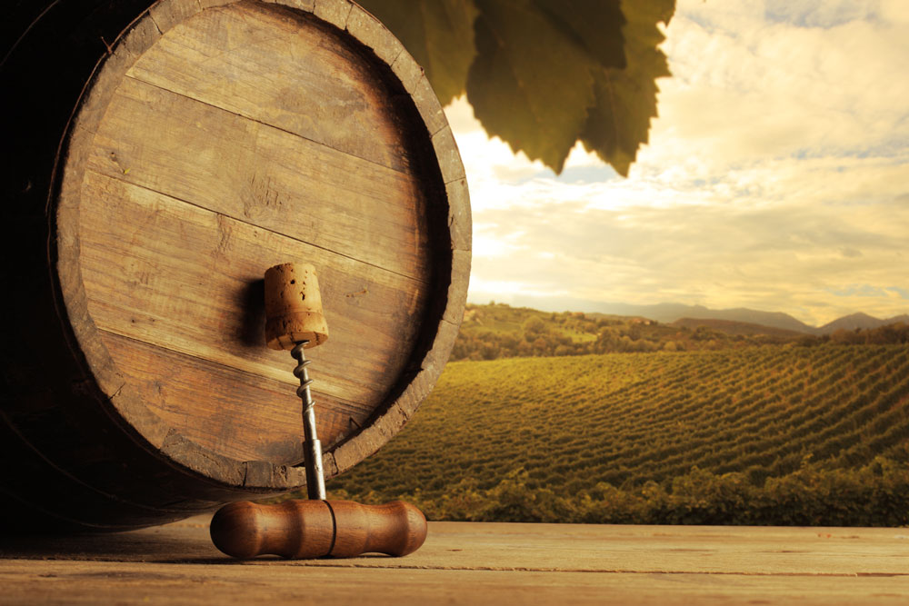 vino-115127953-g